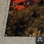 Foto op Tuinposter Omzomen & ogen elke 30 cm