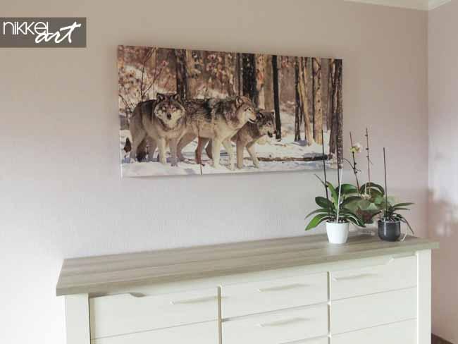 foto op canvas wolven