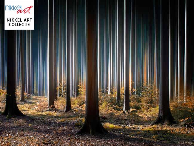 nikkelart collectie bos