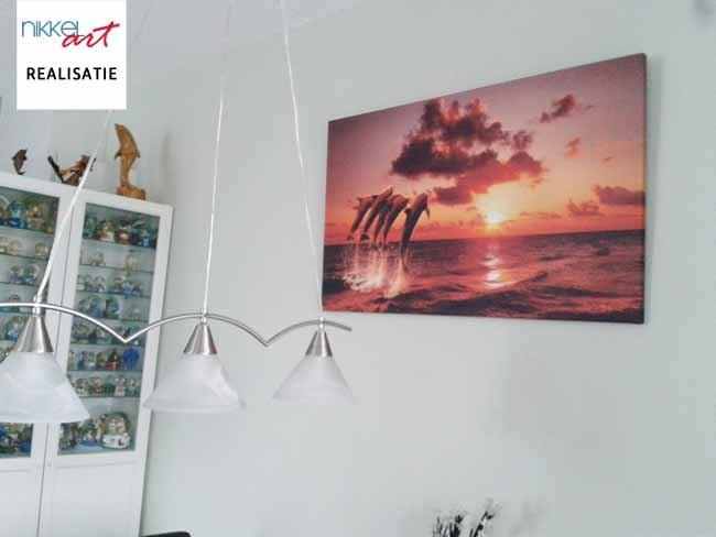 Foto op Canvas Dolfijn