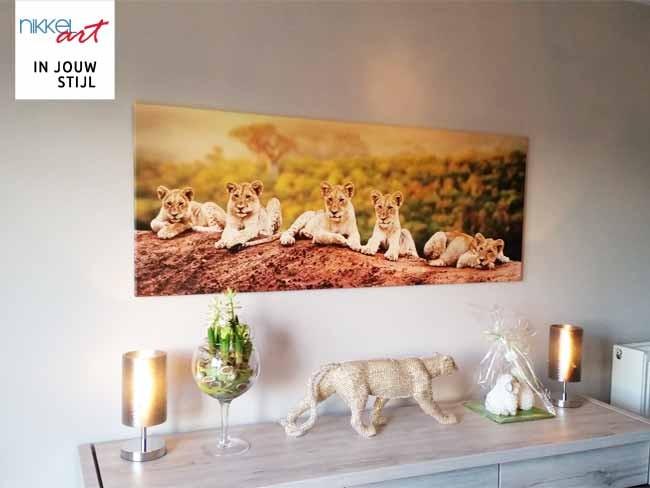 Foto op Canvas leeuwen