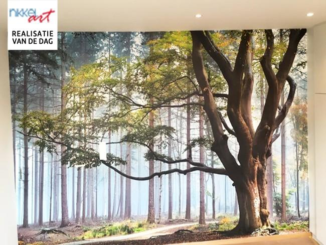 Fotobehang bos voor jouw slaapkamer