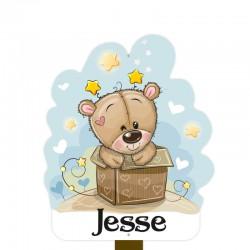 Geboortebord tuin jongen   Teddybeer in doos