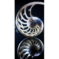 Fotocollage op Plexiglas 90 x 90 cm