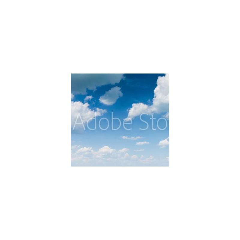 Fotocollage op Plexiglas 80 x 60 cm