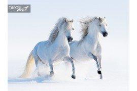 Witte paarden galopperen op sneeuwveld