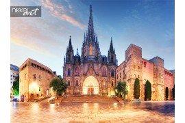 Gotische kathedraal van Barcelona s nachts