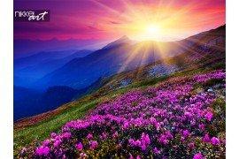 Bergketens prachtige bloemen vallende