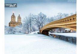 Bow Bridge in Central Park New York