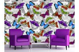Kleurrijke vlinders naadloze