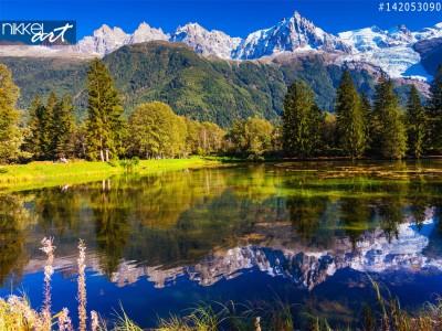 Alpen en Spar bomen in meer weerspiegeld