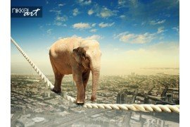 Olifant lopen op touw