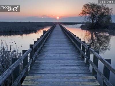 Een zonsondergang op de promenade van de marsh in Point Pelee