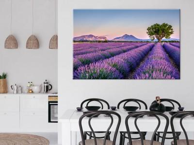 De mooiste bloemen fotografie op canvas