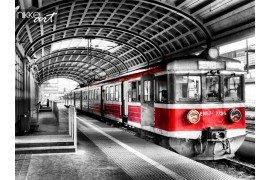 Trein in het station