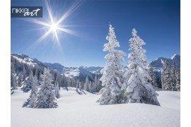 Winter panorama van de bergen