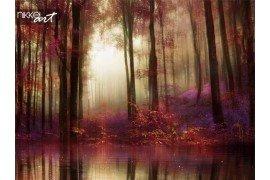 Uitzicht op een fantastische bos met een rivier als gevolg van de bomen