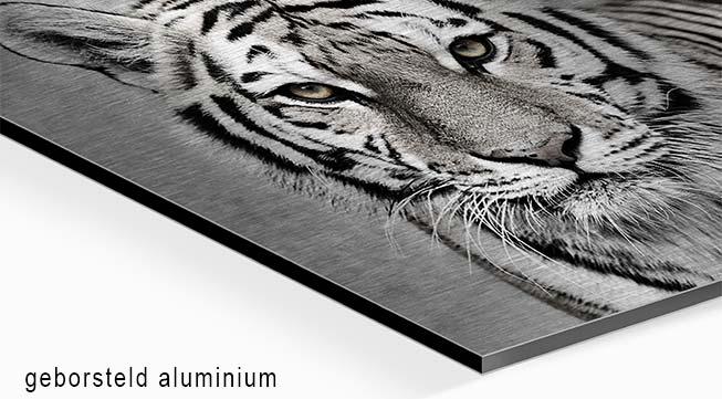 Foto auf gebürstetem Aluminium