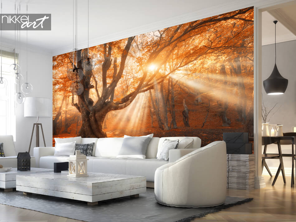 Wall Murals Autumn Forest
