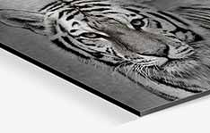Brushed aluminium prints