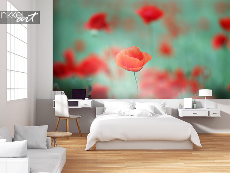 Ingelijste posters red poppy flower spring season