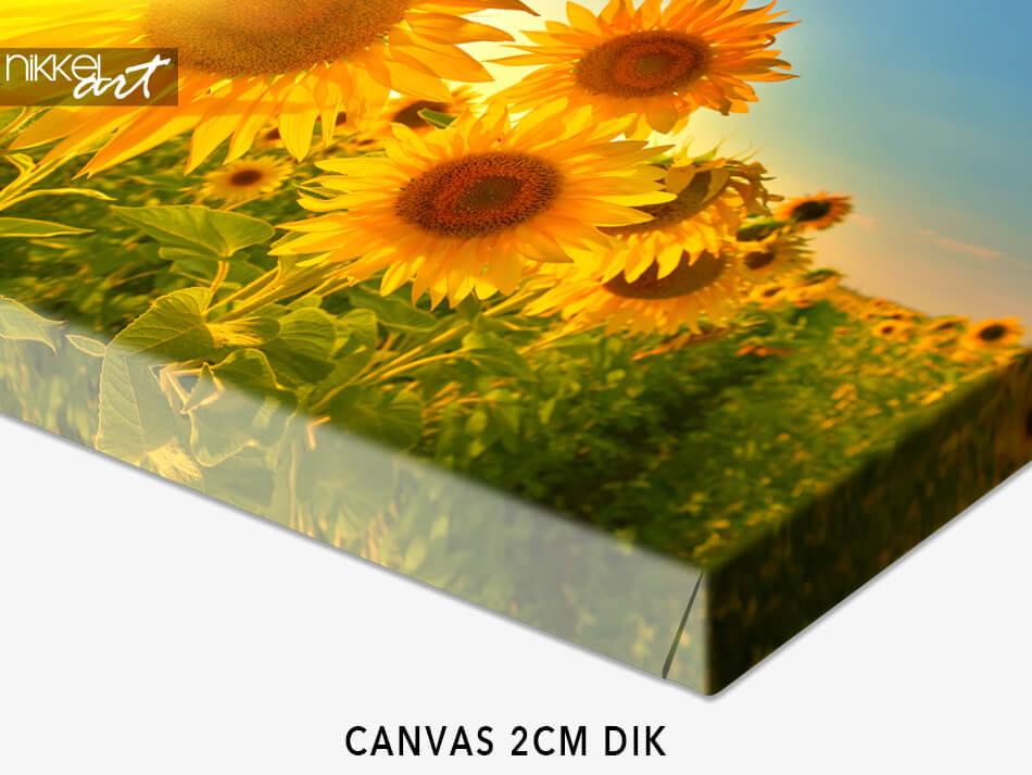 Canvas 2CM