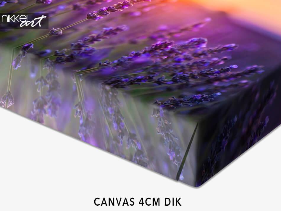 Canvas 4CM