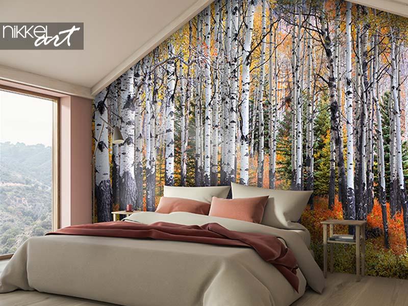 Fotobehang Veel Aspen-bomen in een bos in de herfst