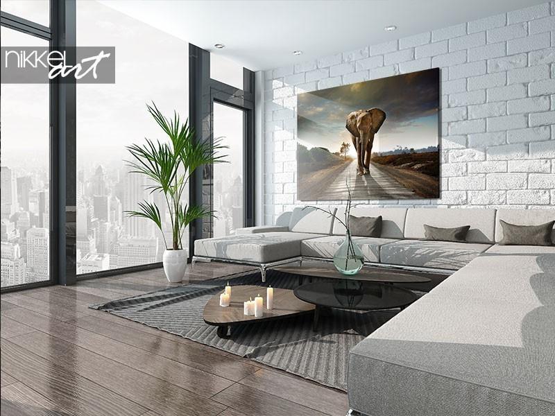 Een foto op aluminium of plexiglas: wat kies jij?