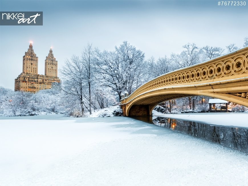 Bow Bridge in Central Park New York