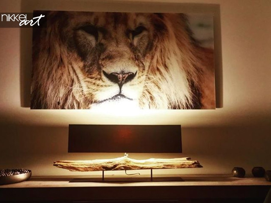 Leeuw op Plexiglas