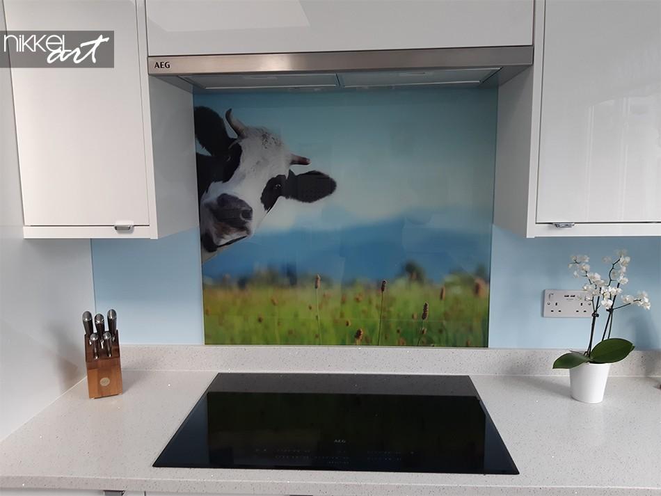 Keuken Foto Achterwand Koe