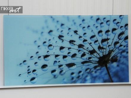 Glas print Paardebloemen en water