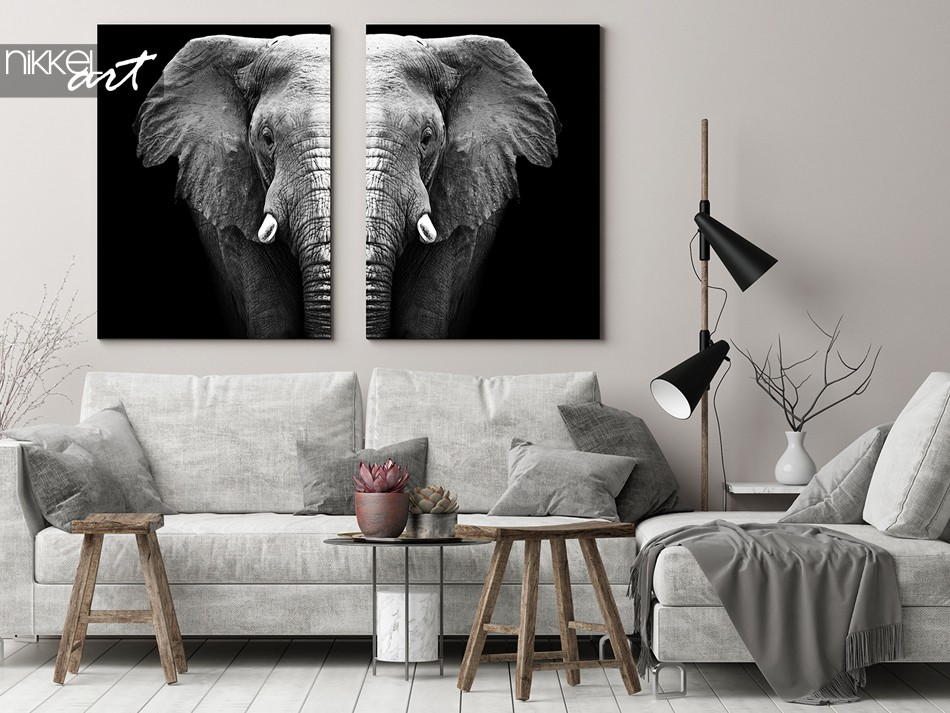 Zwart wit Olifant op canvas