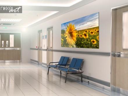 Zonnebloemen op plexiglas