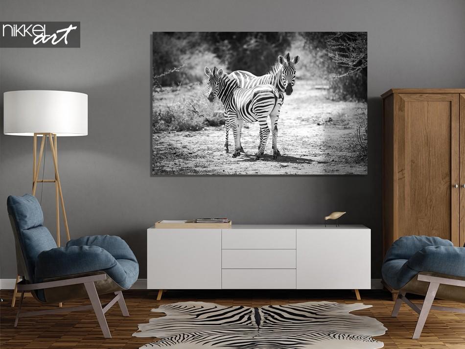 Foto op Plexiglas Zebra