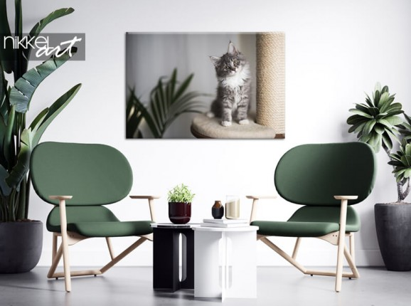 Foto van je kat op canvas