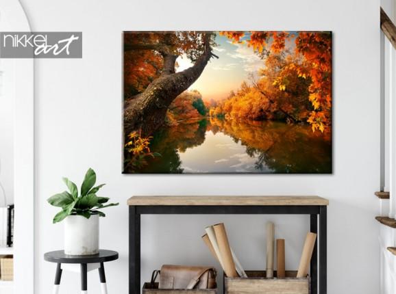 Foto op canvas herfst bos