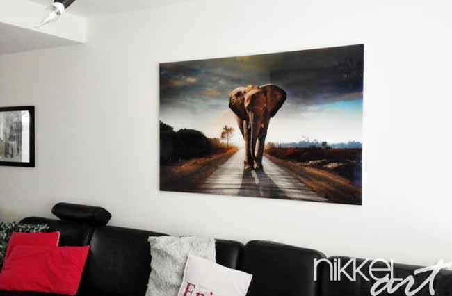 Foto op plexiglas wandelen olifant
