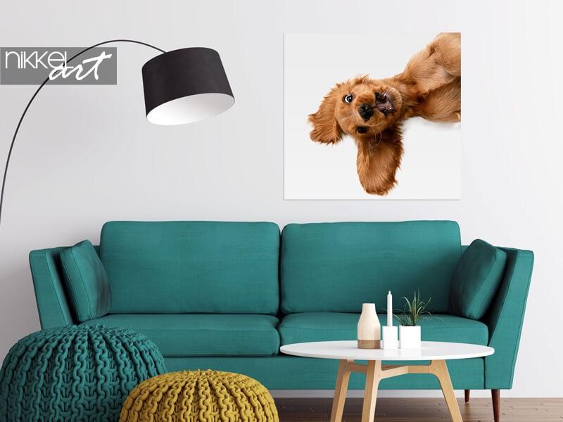 Foto van je hond op poster