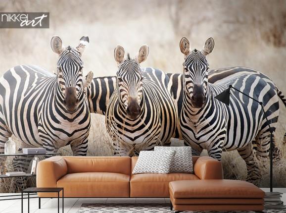 Zebra's op fotobehang