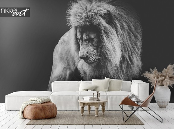 Afrikaanse leeuw op fotobehang