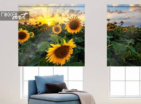 Zonnebloemen op fotorolgordijn