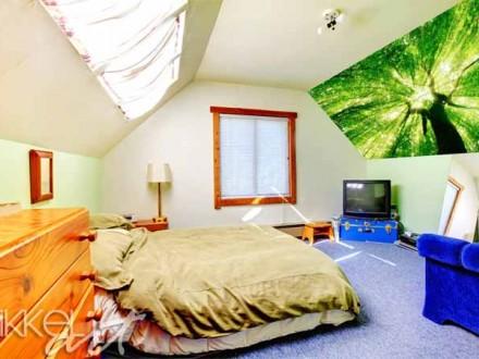 Inspiratie op de muur | fotostickers | bossen