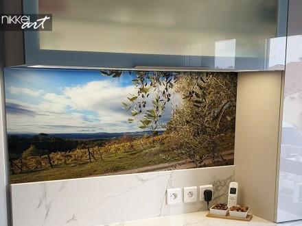 Keuken foto achterwand Olijfboom