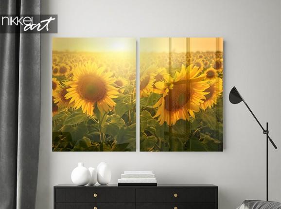Plexiglas tweeluik met zonnebloemen