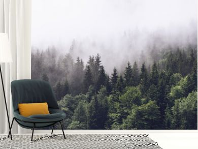 Forested mountain slope in low lying cloud