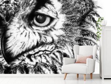 Owl monochrome black and white sketch