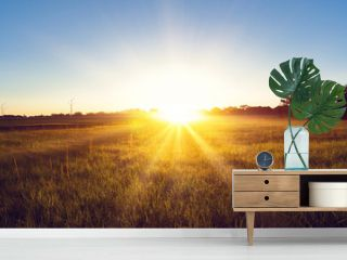 Sunrise country landscape