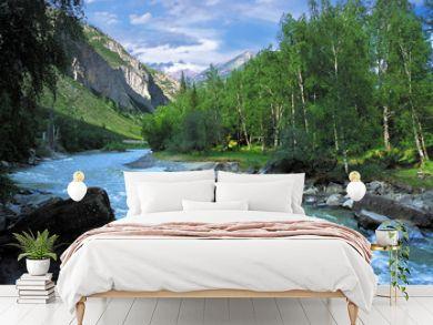 Chuja mountain river in Altai, Russia